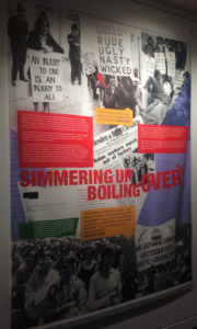 A panel from the 'We are the Lions' exhibition (IRR News)