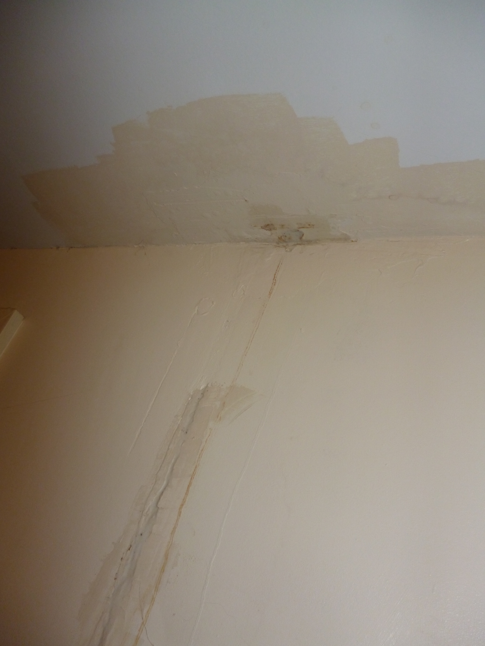 A constant leak from the bathroom above © J. Grayson