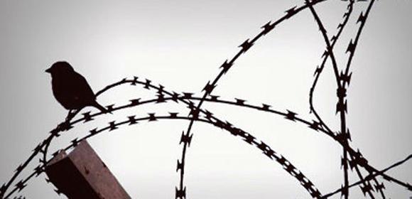 Detention_barbedwire